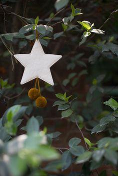 MUSKHANE Winter 16-17- #star #felt - photo #maevadelacroix #muskhane