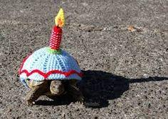 turtle clothing - Buscar con Google