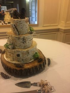 Birch bark rustic wedding cake Wisconsin wedding Tree trunk cake