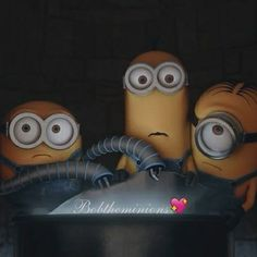 That`s just superb! Minions Bob, Minions Fans, Minions Despicable Me, Minions 2014, Minion Movie, Minion Party, Funny Minion, Minion Rush, Minion Banana
