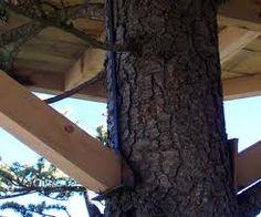 fabriquer une plateforme dans les arbres recherche google cabane pinterest recherche. Black Bedroom Furniture Sets. Home Design Ideas