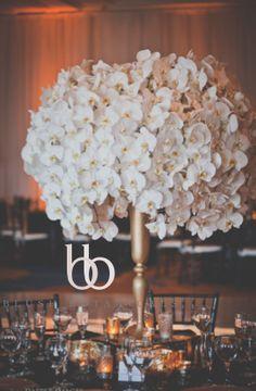 orchid centerpiece, gold wedding, phalaenopsis orchid wedding.  Blush Botanicals, San Diego Weddings by Gina, Dapper Images, Omni La Costa