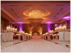 Wedding Elegant decoration -special events idea