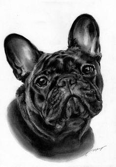 French Bulldog by ~Danguole on deviantART