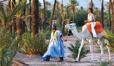 http://www.marrakech.city  Your Marrakech city guide : Visit Marrakech - Book Hotels & Riads in Marrakech - Excursions, Day trips, Tours, Airport transfers  The official website of marrakech, www.marrakech.city is your premier online city guide. riads and hotels in marrakech. what to do in Marrakech.  #MarrakechCity  #RiadsAndHotelsMarrakech