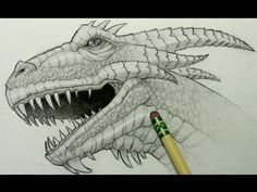 How to Draw a Dragon Head by Mark Crilley. This is a video. Mark crilley is an amazing artest on youtube. Everyone who wants to learn to draw should go to him. He is amazing at realistic drawings and anime and can teach you how to do it.