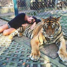 I freakin love tigers