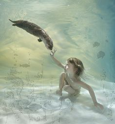 One of the amazing photos taken by Zena Holloway