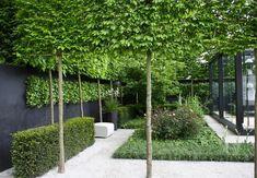 Opstammede træer og hække giver mulighed for at inddele og forme haven, samtidig med, at her stadig er et luftigt design. Traditionen stammer fra flere hundrede år gamle parker og slotshaver.