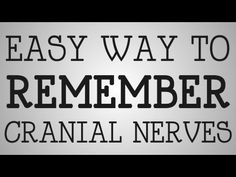 ▶ Nursing Education | Easy Way To Remember Cranial Nerves - YouTube  www.neuroimpulse.net is the bridge between chiropractic and neurology