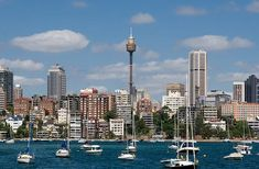 The Sydney Tower with a view of the city Best Cruise Ships, Cruise Destinations, Princess Cruises, Auckland, Cn Tower, Seattle Skyline, New Zealand, Sydney, Australia