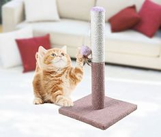 Funmall Ultimate Scratching Post Sisal Teaser and Exerciser for Cats or Kitty Cat Scratcher Post for Pet Cats