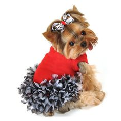 Too cute! Just wish my little girl had enough hair for the bow. But shes a short haired teacup chihuahua.