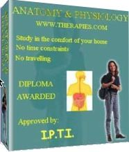 Learn Anatomy & Physiology and start a new career in Holistic therapies.