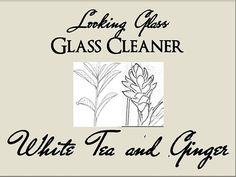 Looking Glass WHITE TEA & GINGER Glass Cleaner on Etsy, $5.50