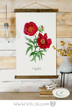 Vintage Inspired Science Posters  PEONY by vol25 on Etsy, $70.00