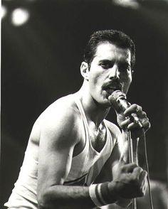 Freddie Mercury (born Farrokh Bulsara) (Queen)05.09.1946-24.11.1991