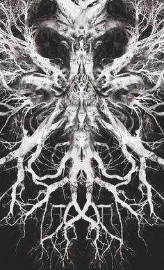 Alexander McQueen print