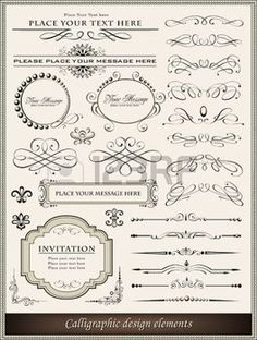 Vector illustration of calligraphic elements and page decoration photo