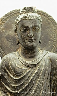 """""""You cannot find peace by avoiding life."""" ~ Virginia Woolf * Gautam Buddha Statue, Century A. Alexandre Le Grand, Fantastic Voyage, Buddhist Philosophy, Eastern Philosophy, Chinese Buddha, Pakistan, Buddhist Art, Ancient Artifacts, Art And Architecture"""
