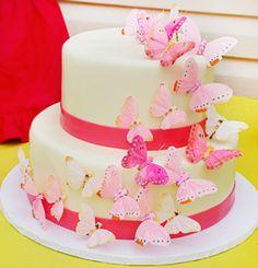 hues of pink butterflies