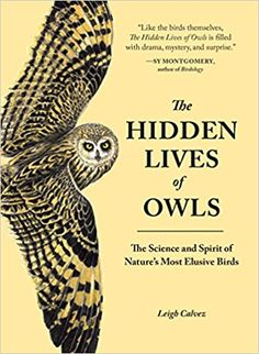 The Hidden Lives of Owls: The Science and Spirit of Nature's Most Elusive Birds: Leigh Calvez: 9781632170255: Amazon.com: Books
