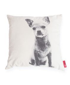 Chihuahua Dog Decorative Throw Pillow