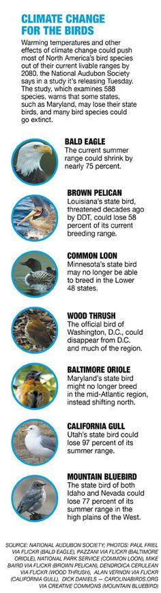 Climate change isn't for the birds - Andrew Restuccia - POLITICO.com