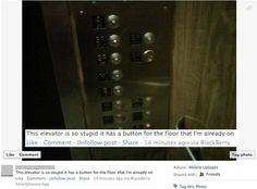 Anyone who is dumber than an elevator. | 31 People Who Will Make You Not Want To Live On This Planet Anymore