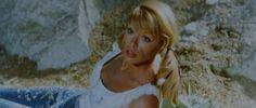 Teresa Gimpera - Campa carogna, la taglia cresce
