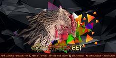 Pada artikel kali ini StationBet.Biz selaku Agen S128 Adu Ayam Resmi akan membahas mengenai Panduan Merubah S128 Adu Ayam Malas Menjadi Agresif. Lion Sculpture, Owl, Statue, Bird, Animals, Animales, Animaux, Owls, Birds