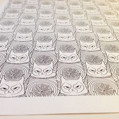 Grumpy cat army