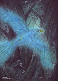 Hercinia bird- medieval legend: a bird that is born in the hercynian forest of Germany. It was said to have luminescent feathers and that it illuminated dark paths of the forest.