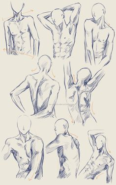 Male Anatomy Practice by Ze-RoFruits.deviantart.com on @deviantART