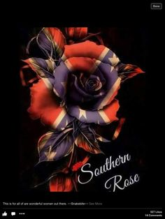 The American Rose Southern Heritage, Southern Pride, Southern Girls, Simply Southern, Southern Belle, Southern Living, Camo Wallpaper, Wallpaper Backgrounds, Wallpapers