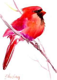 Northern Cardinal bird 7 x 5in by ORIGINALONLY on Etsy