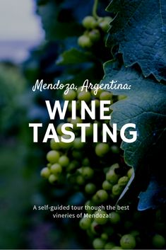 no need to say, we loved their wine! Find out how to visit the best wineries in Mendoza and taste the best Malbec without a tour. Europe Travel Tips, Travel Hacks, Travel Packing, Europe Packing, Travel Ideas, Traveling Europe, Backpacking Europe, Packing Lists, Travel Essentials