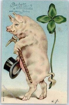 Schweine: Ansichtskarten-Center Onlineshop