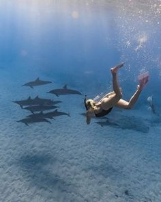 Australia | Kelsey Williamson Say Yes To Adventure