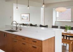 Dyna - Laurelhurst - modern - kitchen - seattle - Dyna Contracting