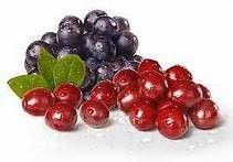 Juice-E-Juice - Crangrape, $5.00 (http://www.juice-e-juice.com/crangrape/)
