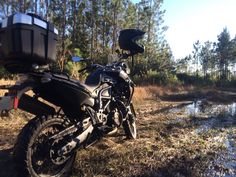 2012 BMW F800gs TripleBlack - At the Ocala National Forest HD Wallpaper From Gallsource.com