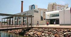ACRAL promove debate em Portimão sobre economia regional! - Algarlife