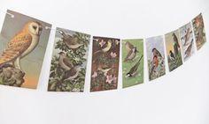 Birds Bunting.Upcycled Garland. British Birds by peonyandthistle, £10.00