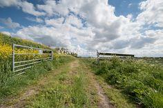 Polderlandschap Alblasserwaard [01100573] - Beeldbank van de Alblasserwaard