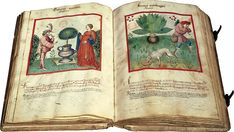 Latinus 9333 is the Latin translation of the so-called Tacuinum sanitatis, a medieval handbook on wellness written in Arabic by the 11th-century physician ibn Butlan. It  deals with factors influencing human health: from the air, the environment and food, to physical exercise and sexual activity.