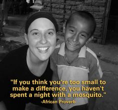 If you think you're too small to make a difference, you haven't spent a night with a mosquito.