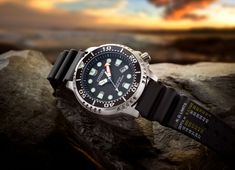 This ISO-compliant men's Citizen Eco-Drive Promaster watch is the perfect choice for any professional diver. Featuring a band devoid of decompression limits, this watch is ideal for all your underwater activities. Citizen Dive Watch, Rolex Watches, Watches For Men, Dove Set, Black Rubber Bands, Elapsed Time, Affordable Watches, Citizen Eco, Larp