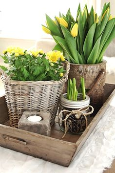 Potted plants make a charming, rustic display in textured baskets.