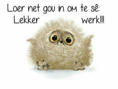Lekker Dag, Goeie More, Afrikaans, Good Morning, Night, Places, Garden, Buen Dia, Garten